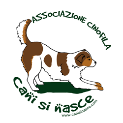 logo_CSN250x250