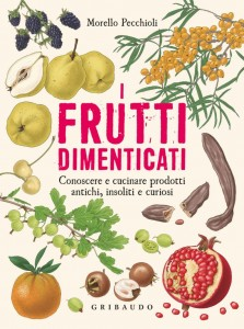 Puntarella-Rossa-I-frutti-dimenticati-768x1029
