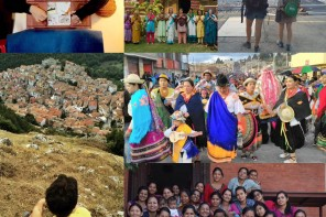 collage progetti FuoriRotta